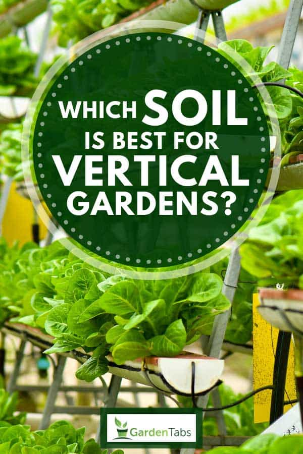 Urban vertical garden with vegetables, Which Soil Is Best For Vertical Gardens?