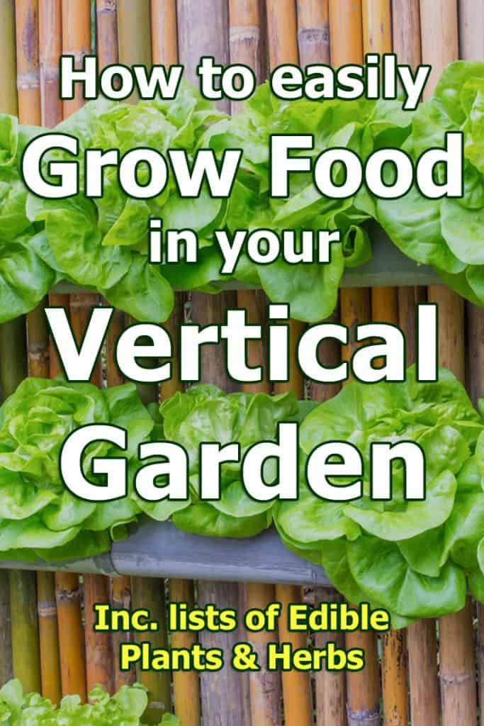 Is growing food in a vertical garden practical? We think so! Let us show you just how easy it is in this quick guide.