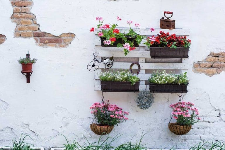 How Can I Use a Pallet for My Vertical Garden?