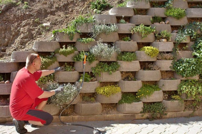 How to Integrate a Vertical Garden into a Retaining Wall
