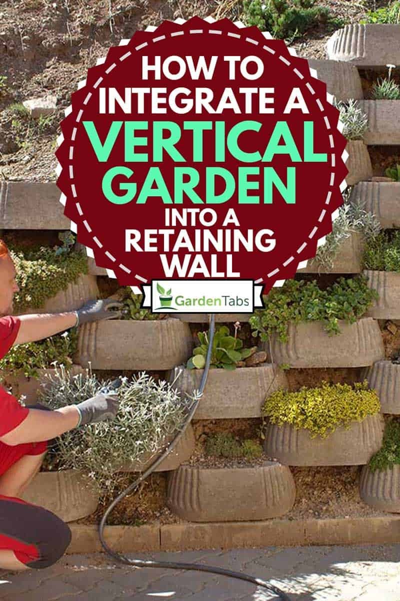A man in red integrating his vertical garden into a retaining wall, How to Integrate a Vertical Garden into a retaining wall