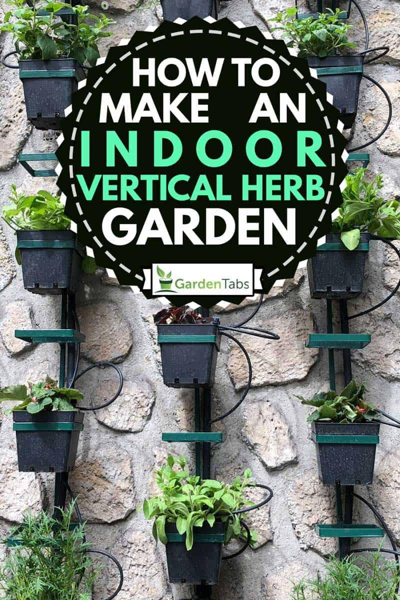 Vertical herb garden on concrete wall, How to Make an Indoor Vertical Herb Garden