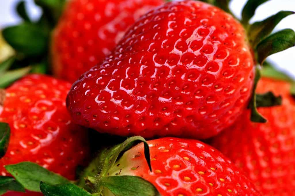 Close up of fresh red strawberries