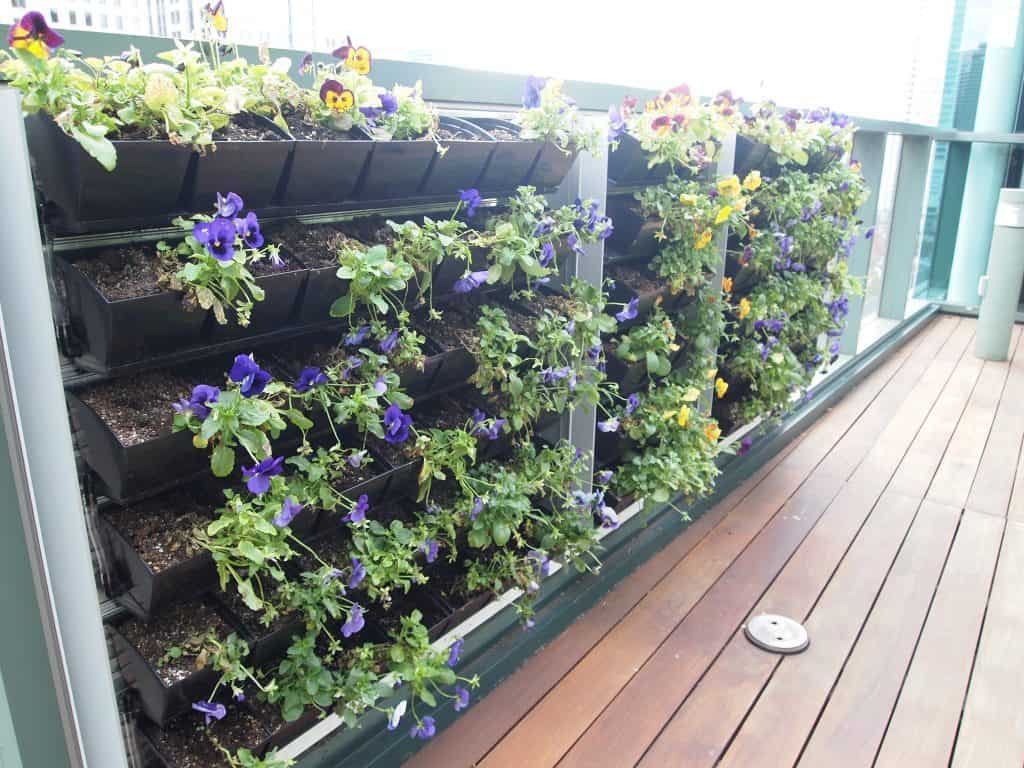 Vertical hanging planters in the balcony