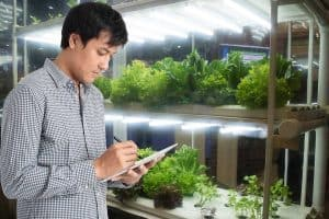 Grow Lights For Your Vertical Garden: A Complete Guide