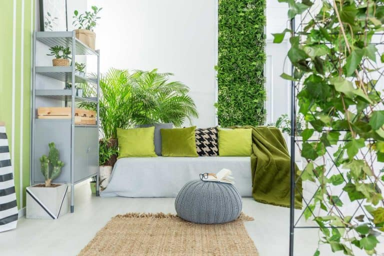 How to Build an Indoor Vertical Garden