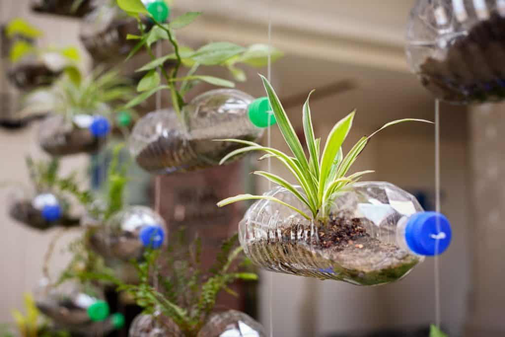 Hanging vertical plastic bottle with plants on it