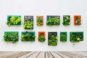 How Much Does It Cost to Make a Vertical Garden?