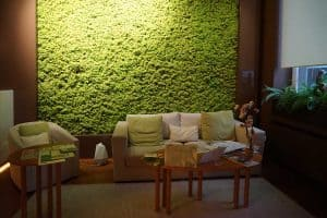Read more about the article What Is A Moss Wall? [And How You Can Create One In 5 Easy Steps]