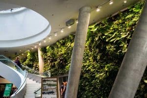 Read more about the article 23 Office Green Walls That Will Inspire You (Pictures Included!)