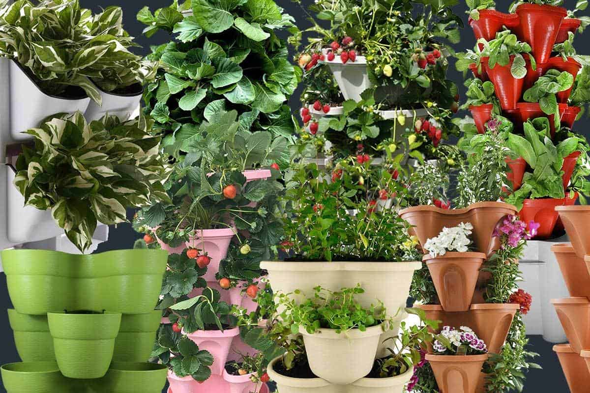 8 Stackable Planters That Can Form An Instant Vertical Garden Garden Tabs