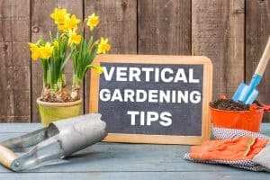 23 Vertical Gardening Tips That Will Take Your Green Wall To The Next Level