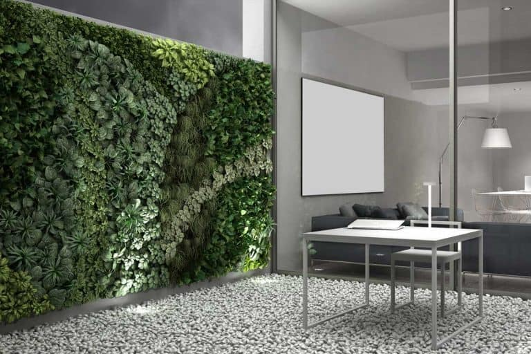 How to Create a Vertical Grass Wall (7 Easy Steps!)
