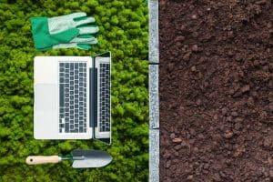Top 30 Online Stores For Live Moss And Moss Seeds