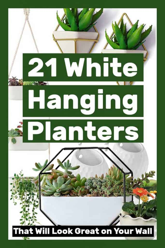 21 White Hanging Planters That Will Look Great on Your Wall
