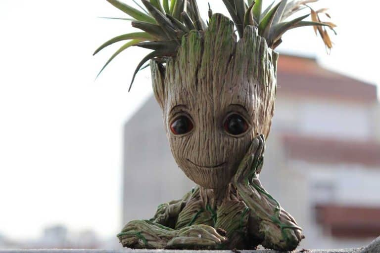 15 Groot Planters That Are Just Too Adorable