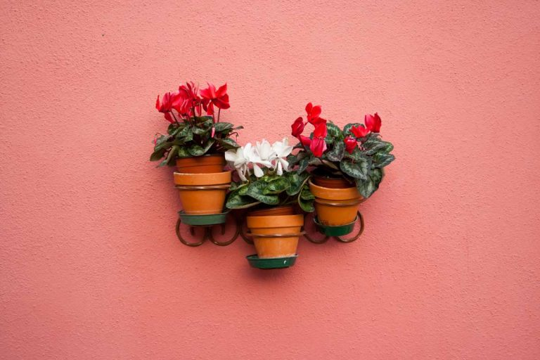 21 Small, Lightweight Planters for Your Vertical Garden