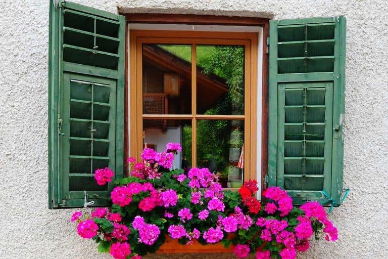 40+ Gorgeous Window Box Ideas (Flower Power Photo Post!)