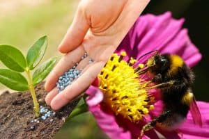 What Is the Difference Between Pollination and Fertilization