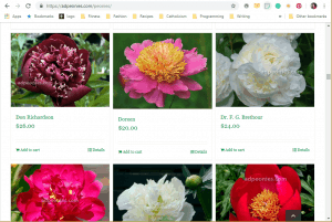 A & D Nurseries website product page for Peony Plants or Bulbs