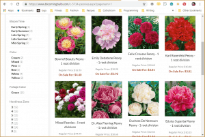 Blooming Bulb website product page for Peony Plants or Bulbs