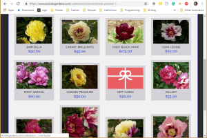 Brooks Gardens website product page for Peony Plants or Bulbs