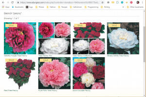 Burgess Seed and Plant Co. website product page for Peony Plants or Bulbs