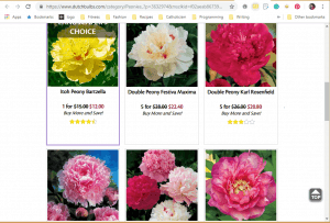 K. Van Bourgondien website product page for Peony Plants or Bulbs