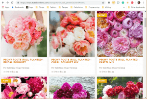 Eden Brothers website product page for Peony Plants or Bulbs