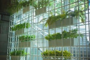 Can You Create A Vertical Garden Without Drilling?