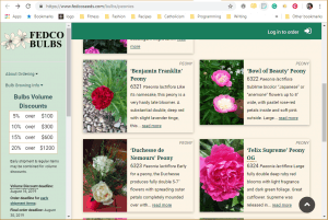 Fedco website product page for Peony Plants or Bulbs