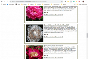 Hidden Springs Flower Farm website product page for Peony Plants or Bulbs