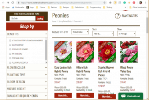 Holland Bulb Farms website product page for Peony Plants or Bulbs