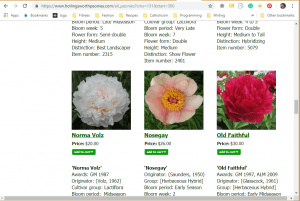 Hollingsworth Peonies website product page for Peony Plants or Bulbs