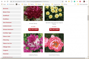 Jung Seed Company website product page for Peony Plants or Bulbs