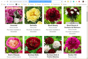 Longfield Garden website product page for Peony Plants or Bulbs