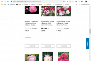 Lowes website product page for Peony Plants or Bulbs