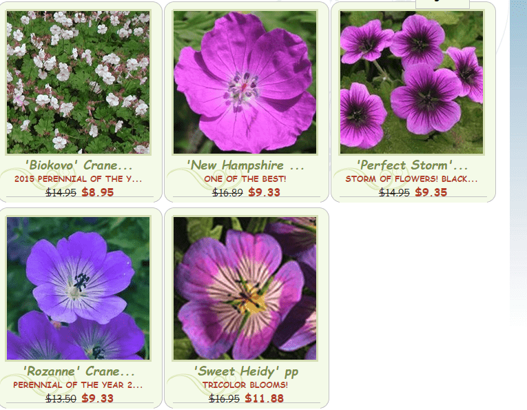 New Garden plants website product page