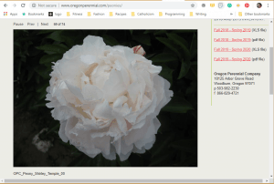 Oregon Perennial Company website product page for Peony Plants or Bulbs
