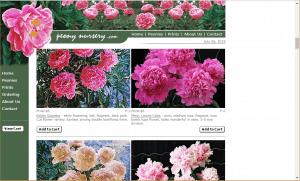 Peony Nursery website product page for Peony Plants or Bulbs