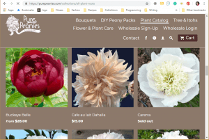Pure Peonies website product page for Peony Plants or Bulbs