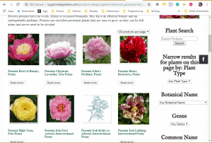 Sugar Creek Gardens website product page for Peony Plants or Bulbs