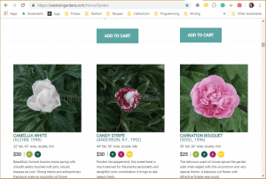 Swenson Gardens website product page for Peony Plants or Bulbs