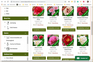 Tulip World website product page for Peony Plants or Bulbs