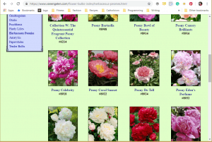 Van Engelen website product page for Peony Plants or Bulbs