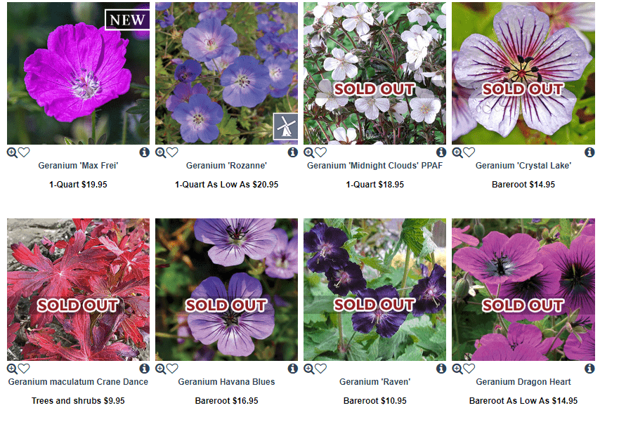 Wayside Gardens website product page