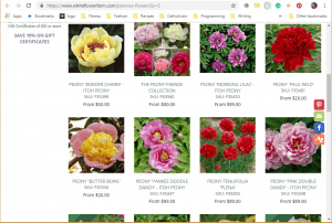 White Flower Farm website product page for Peony Plants or Bulbs