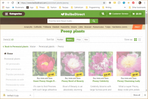 Bulbs Direct website product page for Peony Plants or Bulbs