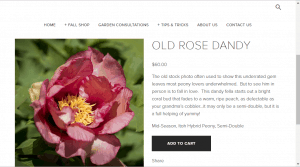 Rare Peonies website product page for Peony Plants or Bulbs