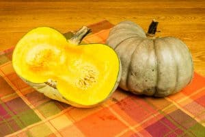 How to Grow Jarrahdale Pumpkins [Care Tips, Photos and More]